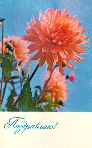 Почтовая открытка «Поздравляю!» - 1967г., СССР