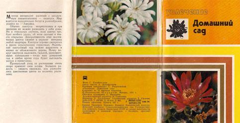 Набор открыток «Увлечение. Домашний сад» - 1974г., СССР
