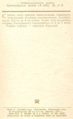 Почтовая открытка «Гимнокалициум Дамса» - 1974г., СССР