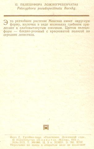 Почтовая открытка «Пелецифора ложногребенчатая» - 1974г., СССР