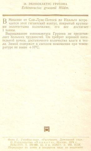 Почтовая открытка «Эхинокактус Грусона» - 1974г., СССР