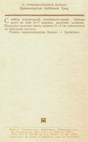 Почтовая открытка «Гимнокалициум Бальда» - 1974г., СССР