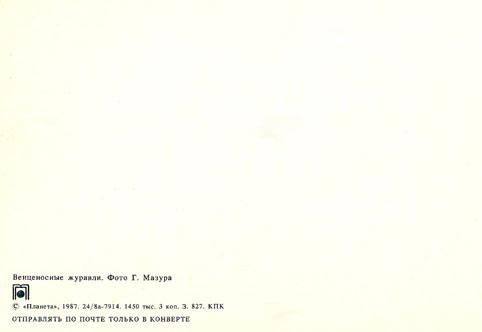 Почтовая открытка «Венценосные журавли» - 1987г., СССР