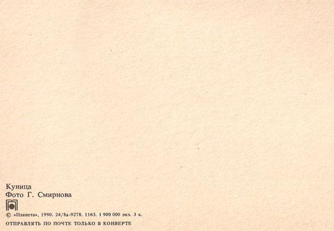 Почтовая открытка «Куница» - 1990г., СССР