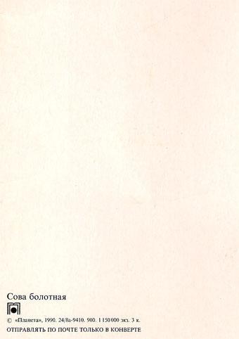 Почтовая открытка «Сова болотная» - 1990г., СССР