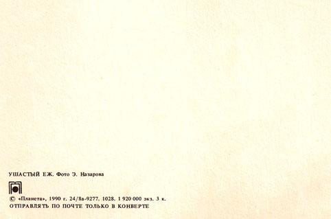 Почтовая открытка «Ушастый еж» - 1990г., СССР