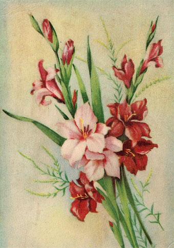 Почтовая открытка «Цветы»